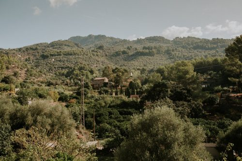 Charming Mallorcan countryside