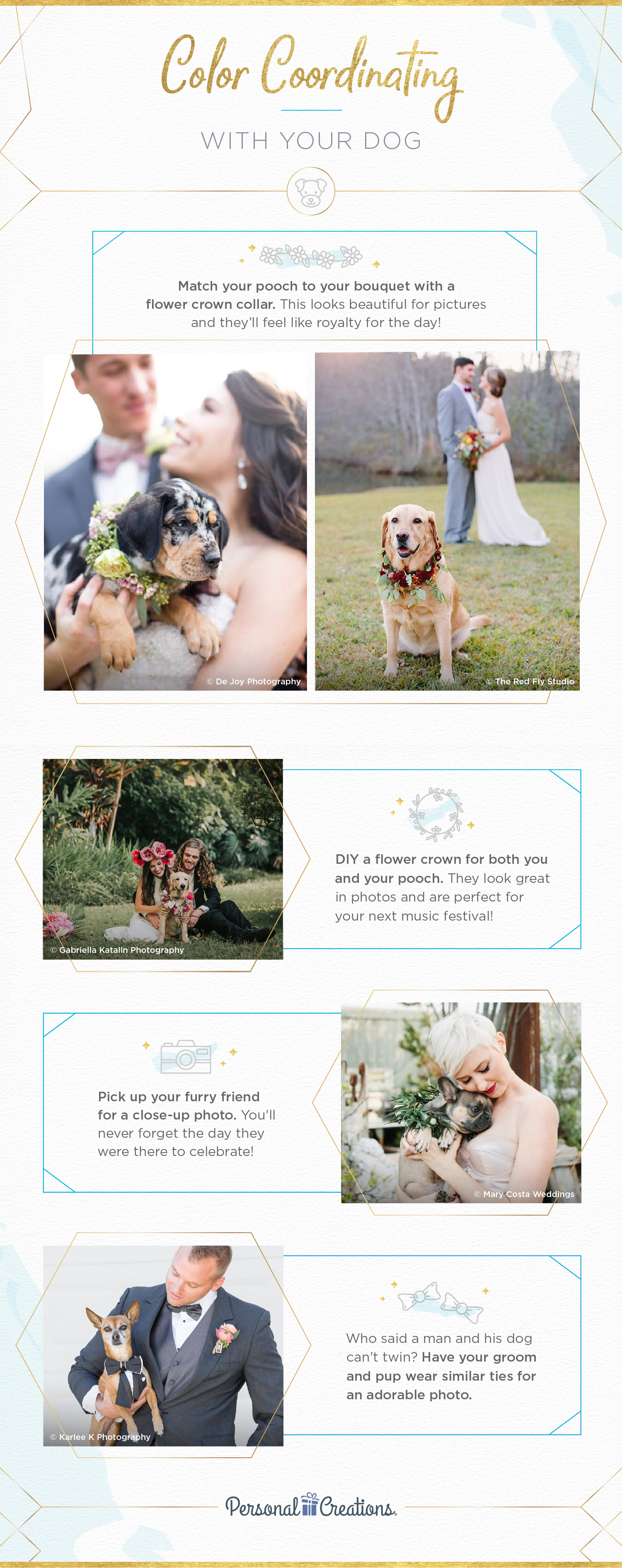 color coordinating with dog wedding